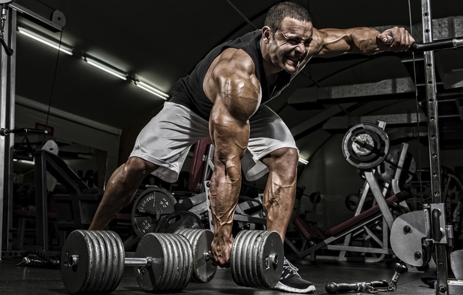 Как тренироваться на курсе стероидов?